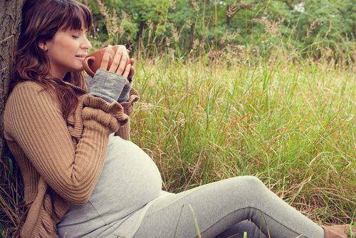 se puede tomar te durante el embarazo